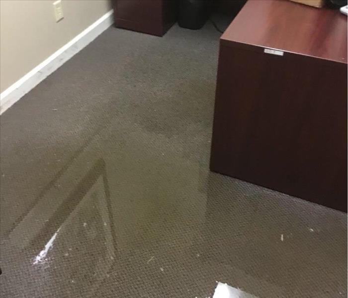 Puddle of water on gray carpet in an office