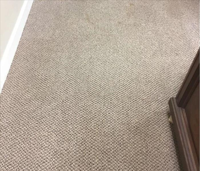 Close-up of grayish carpet in front of office furniture