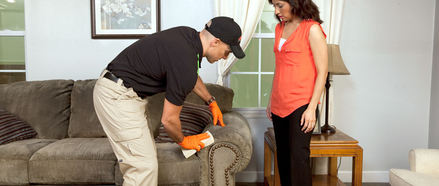 Mooresville, NC carpet upholstery cleaning